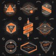 Set of hipster trendy emblems, labels and sign - vector illustration — Stock Vector #65613141