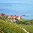 Vineyards of the Lavaux region — Stock Photo #57886733