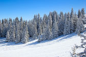 Skiing resort Flumserberg — Stock Photo