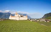 Castle Chateau d'Aigle in canton Vaud — Fotografia Stock