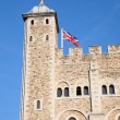 Famous Tower of London — Stock Photo #70385313