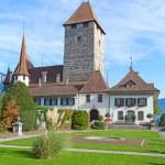 Spiez castle on lake Thun — Stock Photo #70386183
