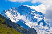 Summer landscape in the Jungfrau region — Stock Photo