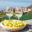 Vineyards of Lavaux region — Stock Photo #71698183