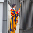 Постер, плакат: Swiss guard in Vatican