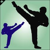 KARATE. Taekwon-do. KYOKUSHINKAI. MARTIAL ART. — Stock Vector