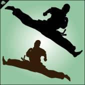 KARATE. Taekwon-do. KYOKUSHINKAI. MARTIAL ART. — Vettoriale Stock