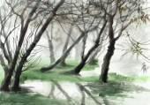 Misty forest — 图库照片