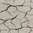 Dryness, dry ground in Corsica, France, Europe (Climate change, global warning) — Stock Photo #59385975