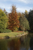 Pond landscape in autumn, Bad Iburg, Osnabrueck country, Lower Saxony, Germany — Stock Photo
