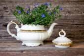 Bouquet of Violet Flowers in White Tea Pot — Stock Photo