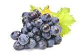 Frutas uvas — Foto Stock