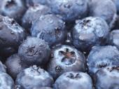 Blueberry fruit — Stock Photo