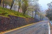 Narrow road at foggy morning. — Stock Photo