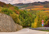 Road and autumnal trees in Piedmont, Italy. — Stock Photo