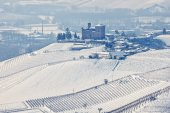 Winter hills of Langhe. — Stock Photo