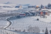Rural wintry view of Langhe. — Stock Photo