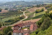 Rural house, vineyards and road in Italy. — Stock Photo