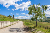 Rural road under blue sky in Italy. — Stock Photo