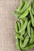 Sugar snap peas on jute — Stockfoto