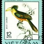 Vintage postage stamp. Bird Ptilolaemus tickelli. — Stock Photo #53513217