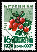Vintage  postage stamp. Berry  Cowberry. — Stock Photo