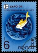 Vintage  postage stamp. EXPO 74. Fish in water. — Stock Photo