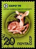 Vintage  postage stamp. EXPO 74. Fawn. — Stock Photo