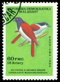 Vintage  postage stamp. Bird Cianolanius madagascariensis. — Stockfoto
