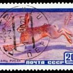 Постер, плакат: Vintage postage stamp Hare hare