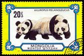 Vintage  postage stamp. Giant Pandas. — Stock Photo