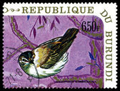 Vintage  postage stamp. Bird   Sedge warbler. — Stock Photo