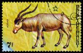 Vintage  postage stamp. Animals Burundi, antelope Addax. — Stock Photo