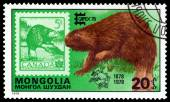 Vintage  postage stamp. Eurasian Beaver and Canada. — Stock Photo