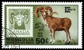 Vintage  postage stamp. Argali and Canada. — Stock Photo