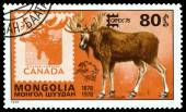 Vintage  postage stamp. Moose and Canada. — Stock Photo