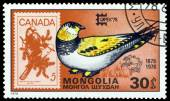 Vintage  postage stamp. Tibetan sand grouse  and Canada. — Stock Photo