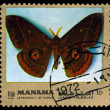 Vintage  postage stamp. Butterfly Salassa lola. — Stock Photo #63635187