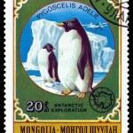 Vintage  postage stamp.  Penguins. — Stock Photo #64526637