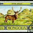 Постер, плакат: Vintage postage stamp Stag in Zuun Araat wildlife preserves