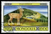 Vintage  postage stamp. Mongolian Deer. — Stock Photo