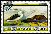 Vintage  postage stamp. Great black- backed gull. — Stock Photo