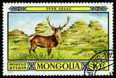 Vintage  postage stamp. Stag in Zuun Araat wildlife preserves. — Stock Photo