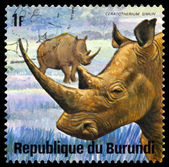 Vintage  postage stamp. Animals Burundi, White  Rhinoseros. — Stock Photo
