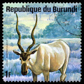 Vintage  postage stamp. Addax. Animals Burundi. — Stock Photo