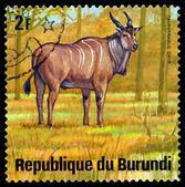 Vintage  postage stamp. Eland. Animals Burundi. — Foto Stock