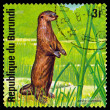 Vintage  postage stamp. African otter. Animals Burundi. — Stock Photo #68745101