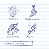Handdrawn Illustration - Health and Nature Set — Vettoriale Stock
