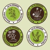 Set of Natural Organic Product badges — Stock Vector
