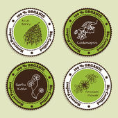 Set of Natural Organic Product badges — Stock Vector